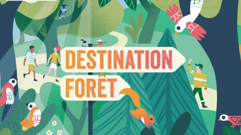 Concours Photos de l'office National Des Forêts