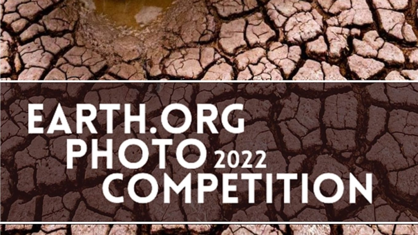 Concours Photo Earth.Org