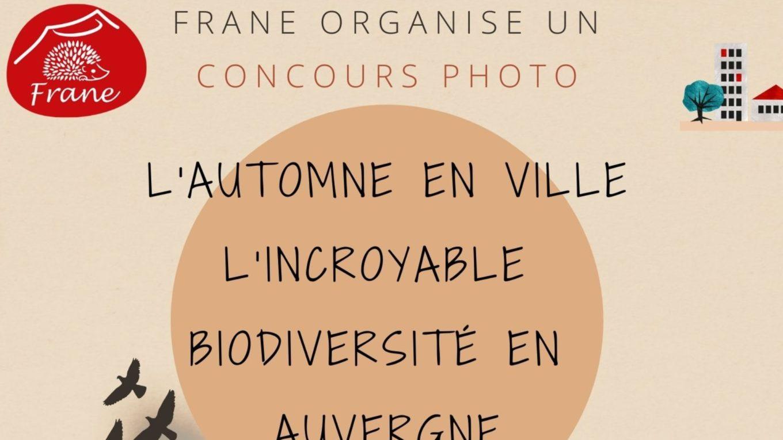 lautomne-en-ville-lincroyable-biodiversite-en-auvergne-2021